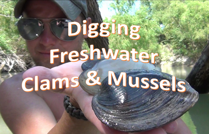 How to Find and Gather Freshwater Clams and Mussels